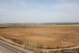 El DOE publica las bases provisionales de la concentración parcelaria de Las Arenas