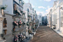 El cementerio municipal preparado para acoger el Día de Todos los Santos